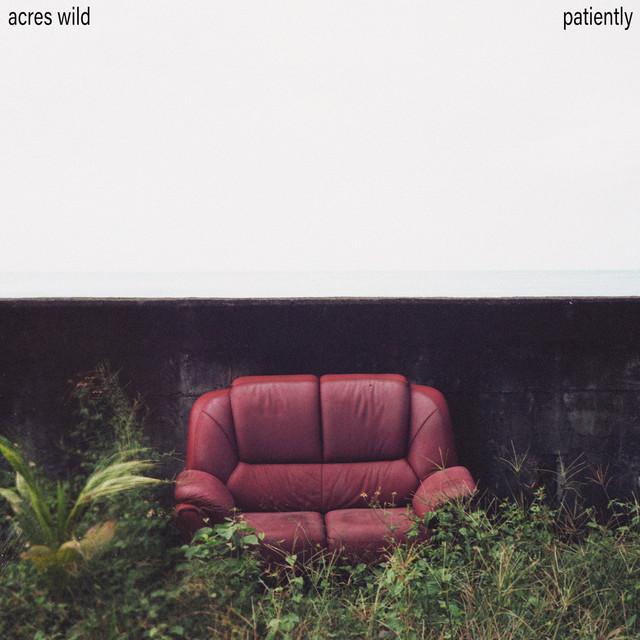 Acres Wild - Patiently