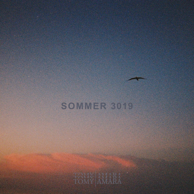 Sommer 3019