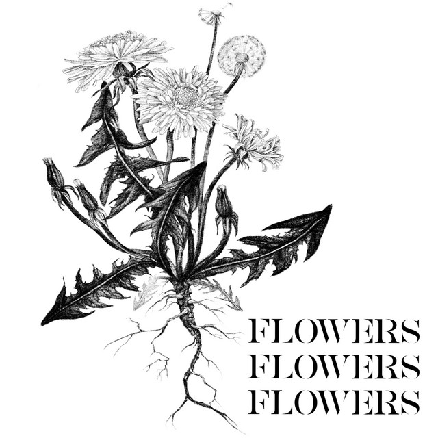 FlowersFlowesFlowers